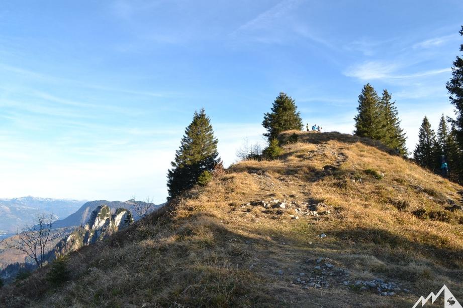 Gipfelplateau der Bleckwand.