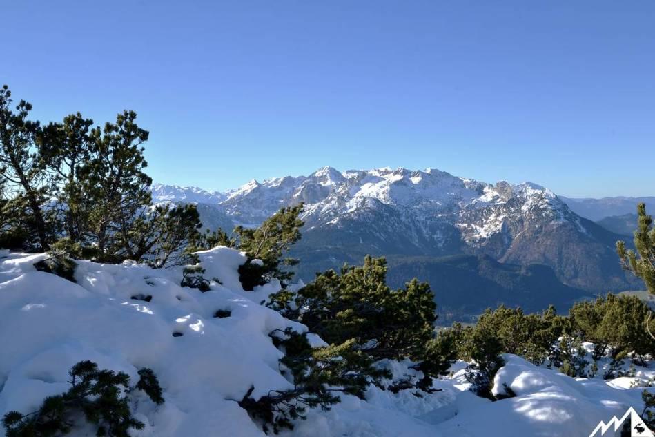 Am Tiefenkarriedel mit Blick aufs Tennengebirge.